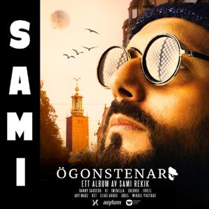 Sami - Ögonstenar