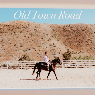 Old Town Road (Acoustic) - Single - Tiffany Alvord