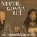 The Terri Green Project - Never Gonna Let (FrankStar 4Q Rework)