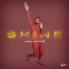 Zvonkiy - Shine artwork