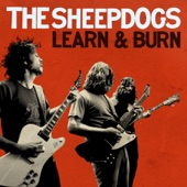 The Sheepdogs - Learn & Burn