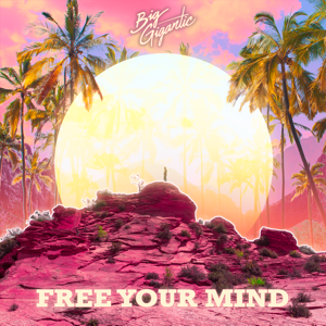 Big Gigantic - Free Your Mind feat. Jennifer Hartswick