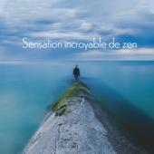 Sensation incroyable de zen: Musique apaisante pour spa, Méditation, Reiki de guérison, Dormir, Musique de guérison