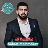 Ay Ömrüm artwork