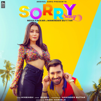 Sorry Song - Single