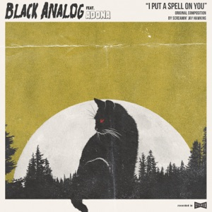 Black Analog - I Put a Spell on You feat. ADONA