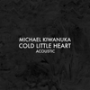 Michael Kiwanuka - Cold Little Heart (Acoustic) illustration