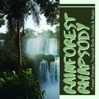 Sunset Feelings - Rainforest Rhapsody - Serenade of a Forest Garden, Tropical Birds Sounds & Music artwork