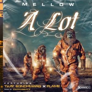 A Lot (feat. Tkay B3nchmarq & Flame) - Single