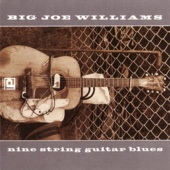 Big Joe Williams - I Got a Bad Mind
