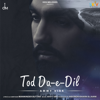 Ammy Virk - Tod Da-e-Dil (Single) artwork