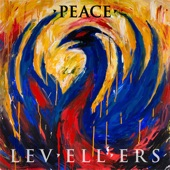 The Levellers - Burning Hate Like Fire