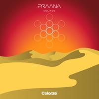 Mojave (Piero Pirupa rmx) - PRAANA