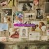 Icon Saigono Piece (feat. Che'Nelle & Beverly) - EP