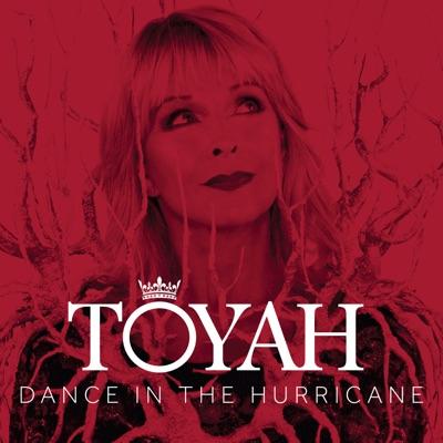 Dance in the Hurricane (Radio Mix) - Single - Toyah