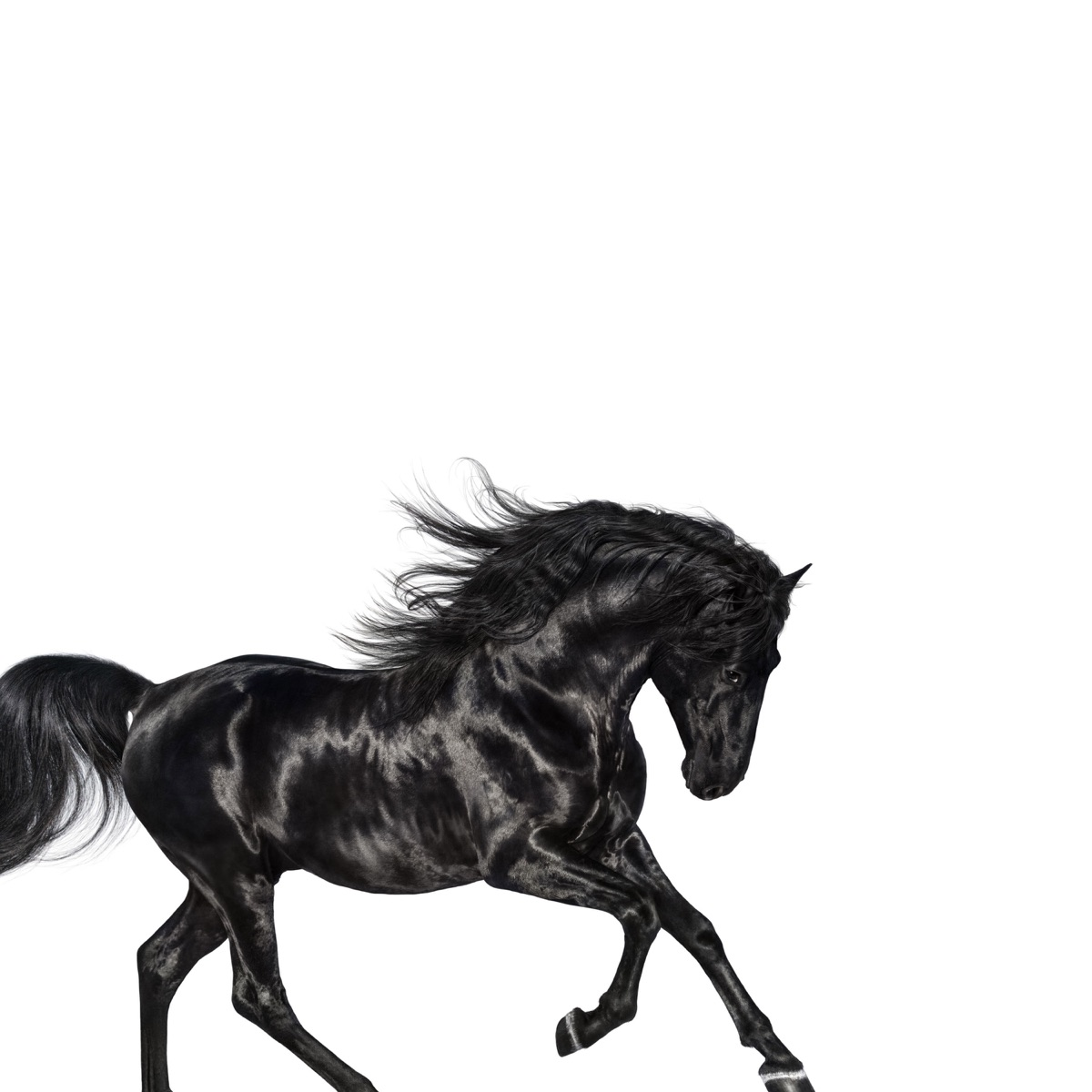 Old Town Road - Single Lil Nas X CD cover
