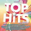 Various Artists - Top Hits - Estate 2019 artwork
