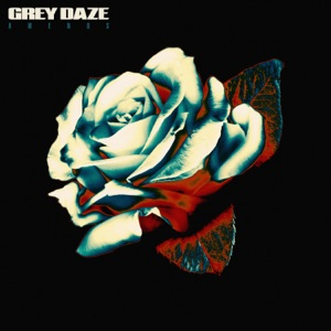 Grey Daze - Sickness