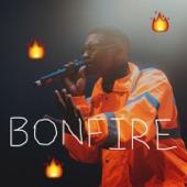 Bonfire artwork