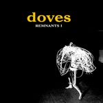Doves - Ship Of Fools