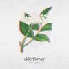 Elderflower - Minor Sunrise artwork
