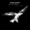 Imagine Dragons - Birds (feat. Elisa) artwork