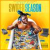 Kingg Bucc - Swiper Season  artwork