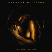 The Love Factor - Brandon Williams - Brandon Williams