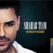 Shahab Tiam - Hamechi Khoobeh