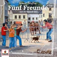 Fünf Freunde - Folge 136: Fünf Freunde und der wütende Stier artwork