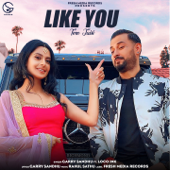 Like You (feat. Loco Ink) [Tere Jaisi] - Garry Sandhu