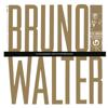 Bruno Walter in Conversation with Arnold Michaelis (Remastered) - Bruno Walter & Arnold Michaelis