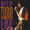 The Best of Todd Rundgren Live