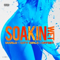 Soakin Wet (feat. City Girls & Offset) - Single Mp3 Download