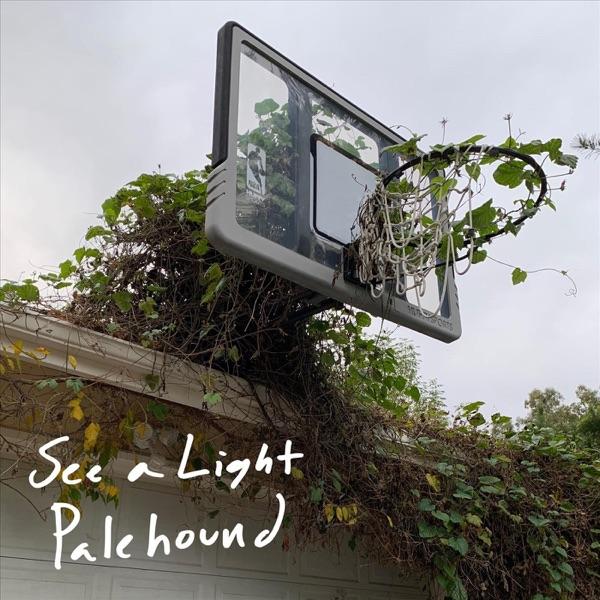 Palehound See A Light