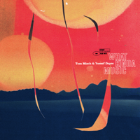 What Kinda Music-Tom Misch & Yussef Dayes