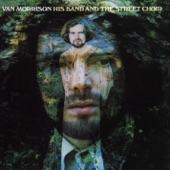 Van Morrison - I've Been Working