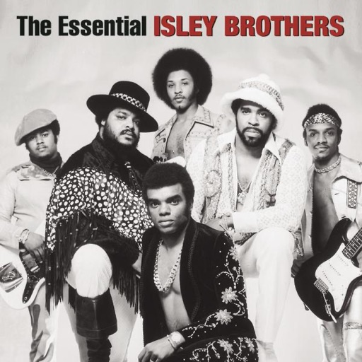 Art for Groove with You by The Isley Brothers