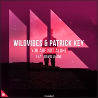 You Are Not Alone - WILDVIBES-PATRICK KEY-DAVID SHANE