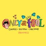 Galantis & Ship Wrek - Only A Fool (with Pink Sweat$) [Low Steppa Remix]