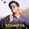 Meri Sohneya feat Dj Ari Nation Refixed Single