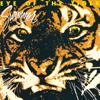 Survivor - Eye of the Tiger artwork