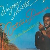 Wayne Shorter - Joanna's Theme