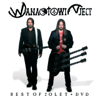 Best of 20 Let - Wanastowi Vjecy
