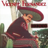 Vicente Fernández - Aca Entre Nos