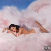 Katy Perry - If We Ever Meet Again