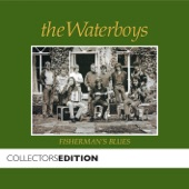 The Waterboys - The Stolen Child