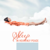 Deep Sleep Music Maestro - Trouble Sleeping artwork