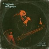 The California Honeydrops - Under the Boardwalk (Live)