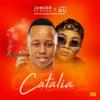 Junior De Rocka & Lady Du - Catalia (feat. Mr JazziQ, Mellow & Sleazy) artwork